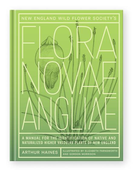 Flora Novae Angliae