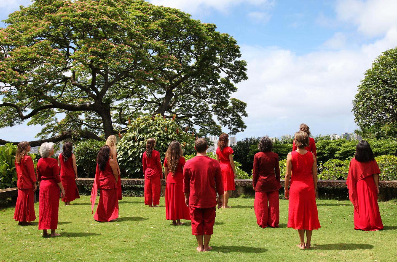 Pujol Hawaii
