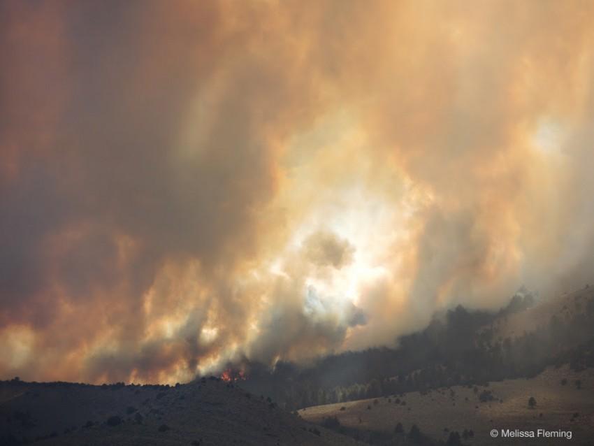 Walker Fire, California 2015
